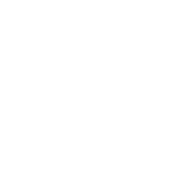 Point 65 North