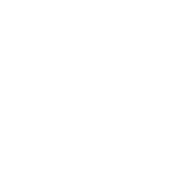 Polyver Boots